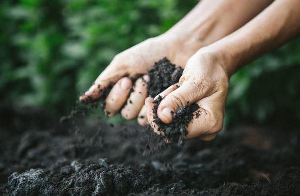 Le compost, comment ça fonctionne?